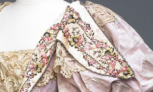 Detail of bodice and sleve (image/jpeg)